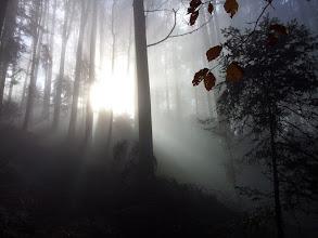 Photo: 2011-11-12 12.23.37.jpg