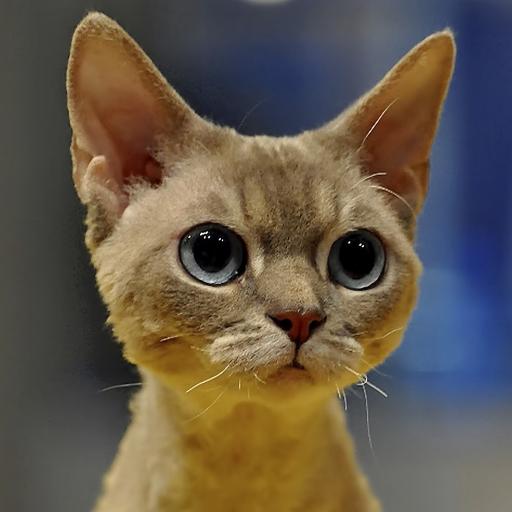 猫サウンズ