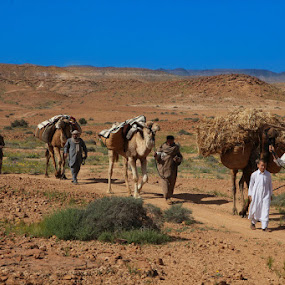 Convoy in Old times  2 by Abdulmagid alfrgany Photograph - People Fine Art ( everyday life )