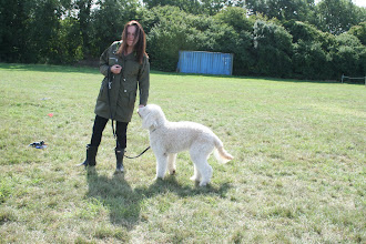 Photo: Kelly and Alan Labradoodle