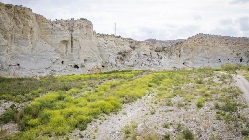 Yacimiento de El Argar en Antas, un patrimonio único en el Levante almeriense.