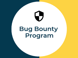 Nowadays people earn just by reporting a bug for a company 3