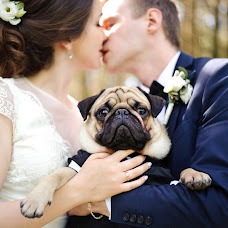 Wedding photographer Eleonora Golovenkina (eleonoraphoto). Photo of 06.06.2017