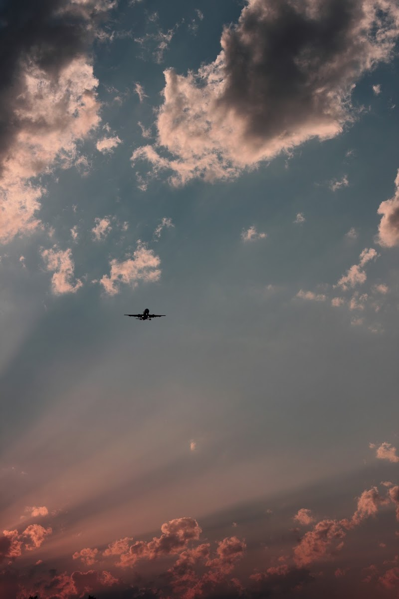 alla luce del tramonto  di giulia_zion_irie