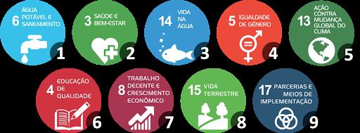 ONU Objetivos de desenvolvimento sustentável