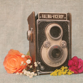 cam2 by Heather Catherine - Artistic Objects Still Life ( vintage, vintage camera rose flowers, vintage camera, vintage camera rose flowers roses, vintage camera rose )