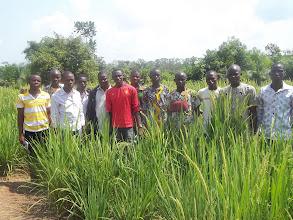 Photo: Jeunes à l'ecole SRI Benin [2012, photo provided by Pascal Gbenou]