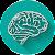 Técnicas de Memorização file APK Free for PC, smart TV Download