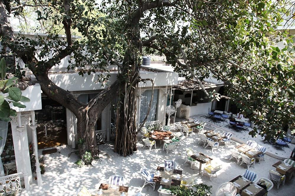 most-romantic-restaurants-delhi-ncr-Olive_Qutub
