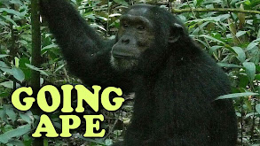 Going Ape thumbnail