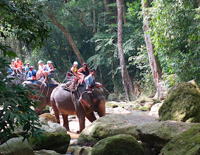 Photo: ride an elephant up to the waterfall