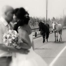 Wedding photographer Pavel Petruk (pauljj). Photo of 06.09.2013