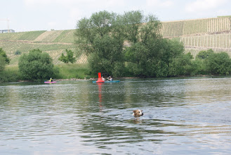 Photo: Wintrich   