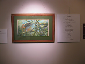 Photo: Mindy Schnell, http://lter.limnology.wisc.edu/ltearts/exhibition/panel12