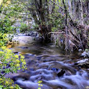 Kampi's small river by Anastasis Agathokleous - Landscapes Waterscapes ( rocks, waterscape, longexposure, plants, river, landscape )