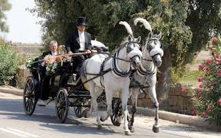 Carriage Vis-a-vis Olive Green Rent Central Region