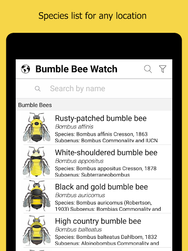 Download Bumble Bee Watch on PC & Mac with AppKiwi APK