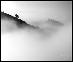 Photo: another series mist