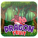 Download Dragon Fruit For PC Windows and Mac