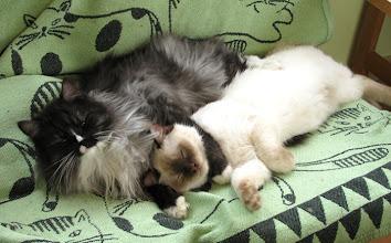 Photo: Dimittri and Susu