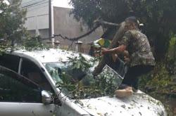 Hujan Deras dan Angin Kencang Di Ngawi