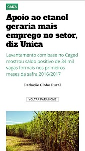 Revista Globo Rural screenshot 2