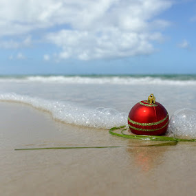Before Christmas onAdelaide beach by Zdenka Rosecka - Public Holidays Christmas (  )