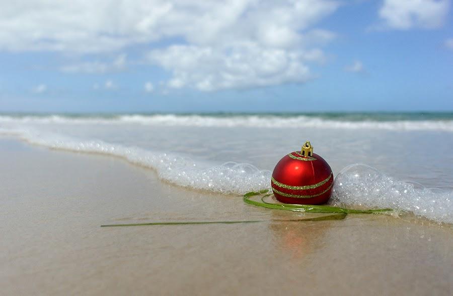 Before Christmas onAdelaide beach by Zdenka Rosecka - Public Holidays Christmas (  )