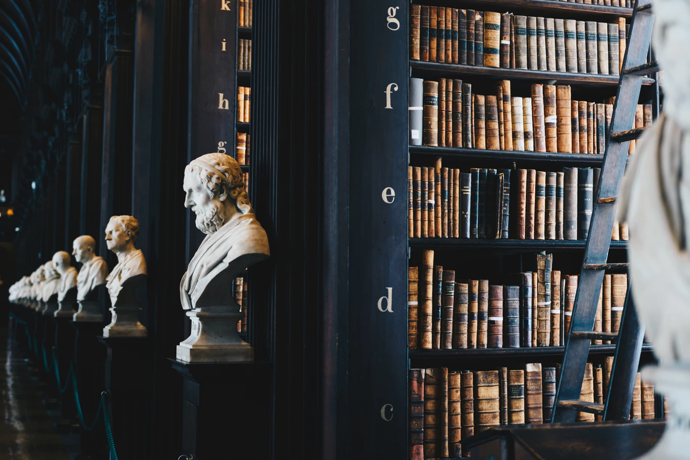 4 Things To Look for When Searching for Lawyers