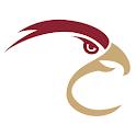 The FC Talon icon