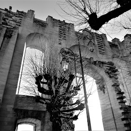 porte chantilly by Nathalie Coget - Black & White Buildings & Architecture