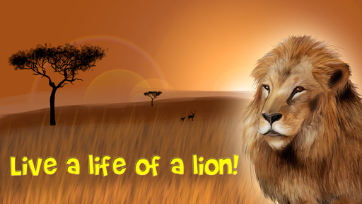 Safari Wildlife Lion simulator