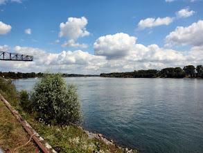 Photo: ...am Rhein
