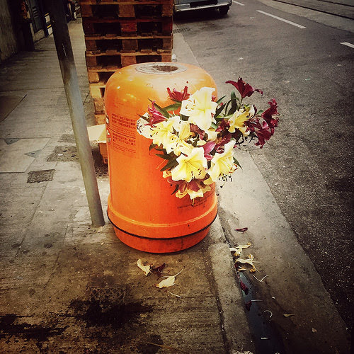 Hong Kong, Trashcans, 香港, 垃圾桶