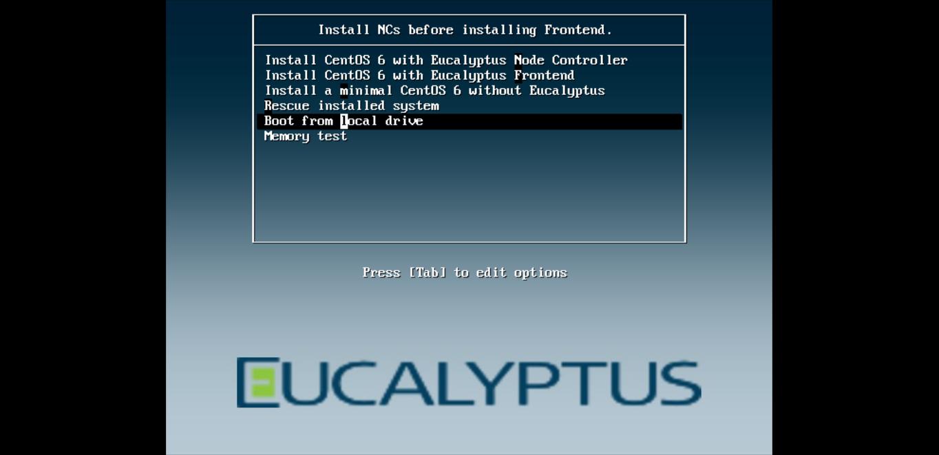 encalyptus_figura2.png