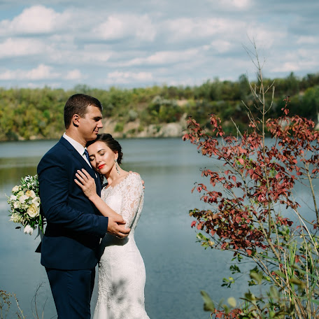 Wedding photographer Alena Danilyuk (AlenaDanyluk). Photo of 23.12.2017