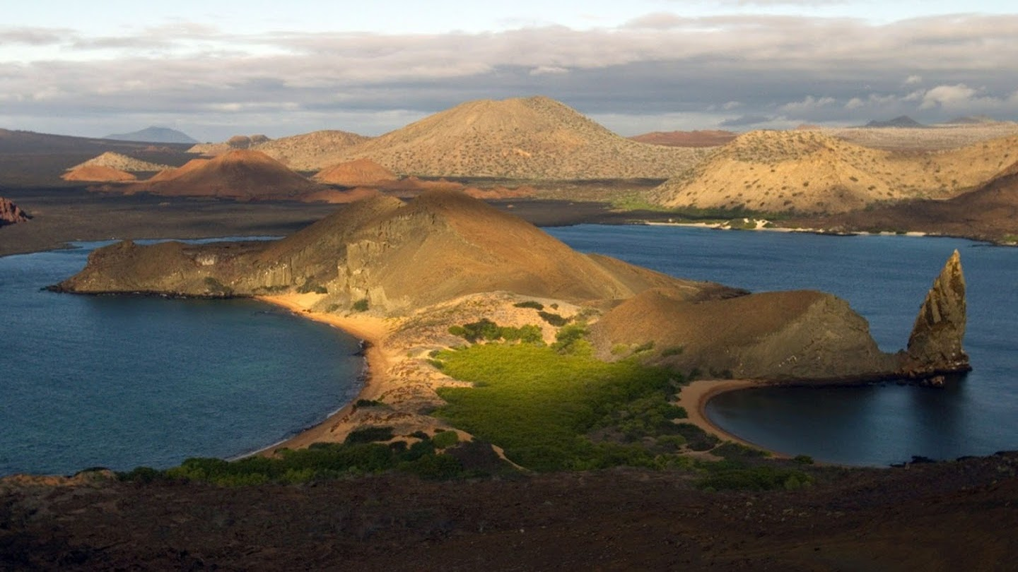 Watch Galapagos live
