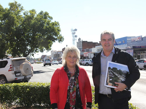 Narrabri Shire Mayor Cathy Redding and infrastructure delivery director Darren Raeck in front of one of the two trees still to be removed as it sits on a water main. This tree outside the state government offices  will come down on a weekend as will the other one near the Caledonian Hotel.