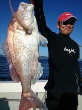 Photo: いいサイズ! 真鯛キャッチです!