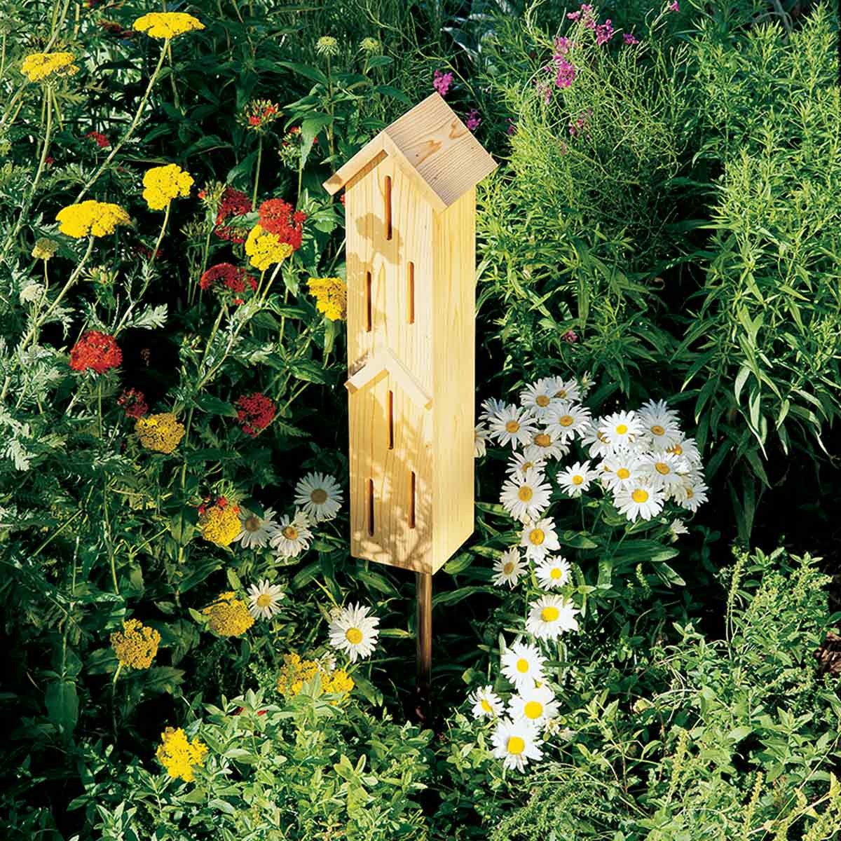Butterfly House: These projects will help you transform your space.