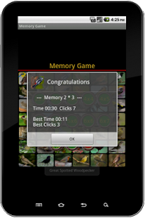 True Birds Memory Game_4