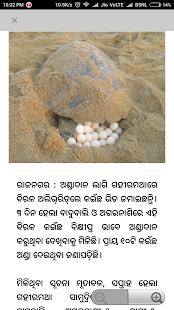 Oriya News Paper - náhled