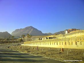 Photo: Vista general de las parcelas.