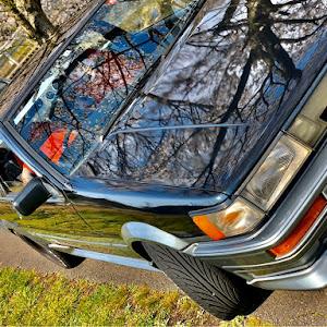 カローラレビン AE86のカスタム事例画像 もーりーさんの2020年04月02日16:46の投稿