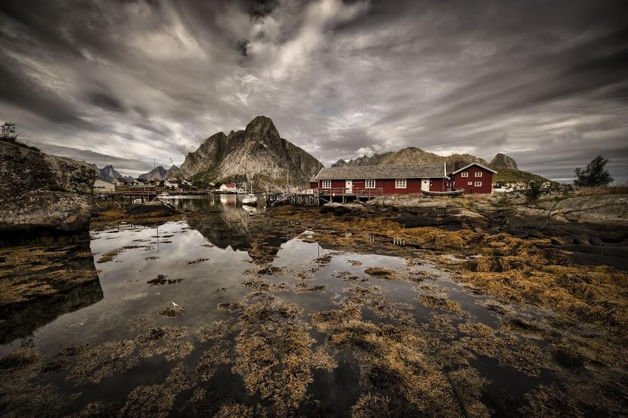 Fishing Village by Petter Gundhus - City,  Street & Park  Vistas ( reine, lofoten, norway )