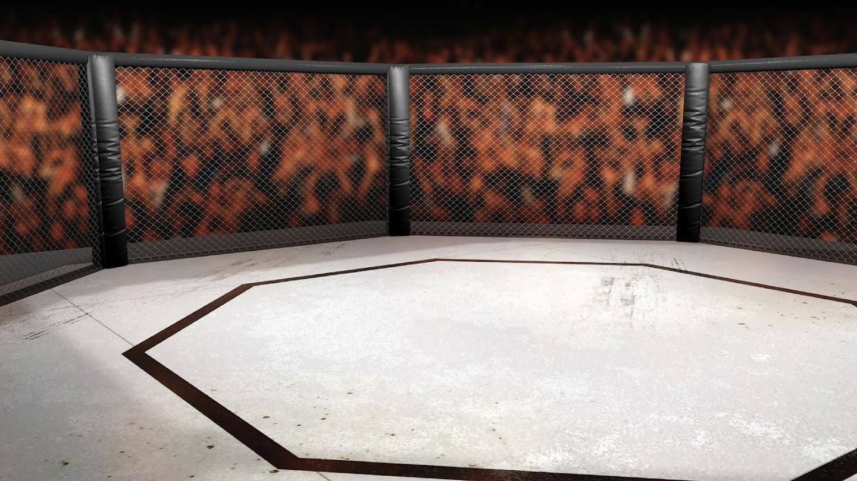 UFC: The Walk