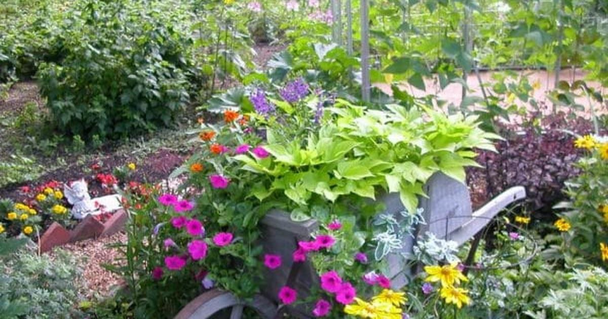 Swell Garden.jpg