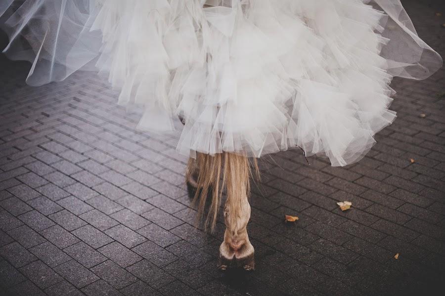 Wedding photographer Aleksandr Medvedenko (Bearman). Photo of 27.12.2013