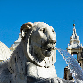 Thristy Kitty by Ronald Rivas - City,  Street & Park  Fountains ( sculpture, rome, fountain, italy, plaza )