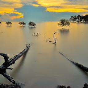 Kelanang by Azri Suratmin - Travel Locations Landmarks ( water, orange, wood, azri, kelanang, sunset, air, malaysia, azrisuratmin )